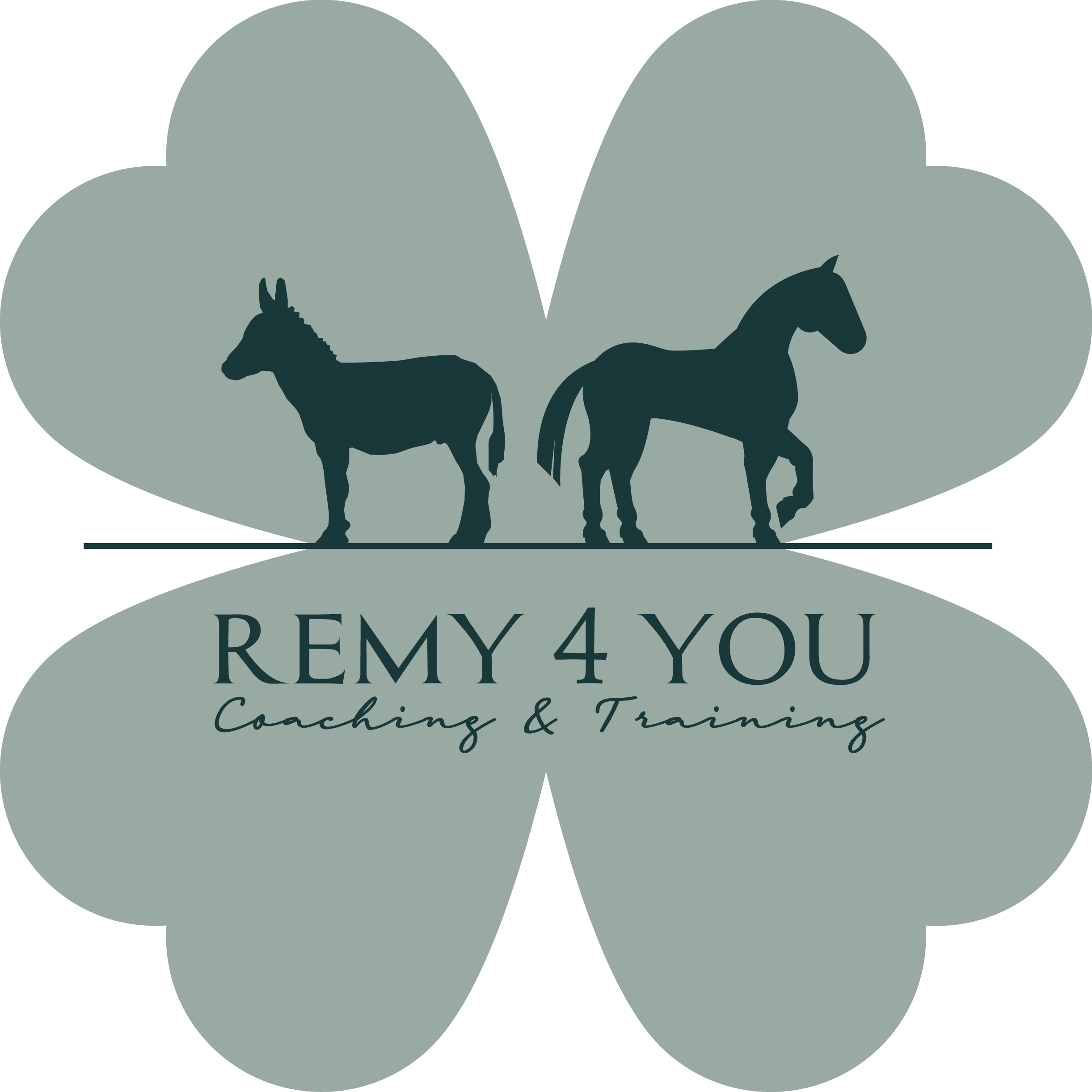 Remy4YOU